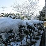 0213 雪2